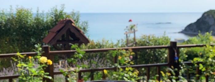 Erdi Sitesi is one of Posti che sono piaciuti a Deniz.