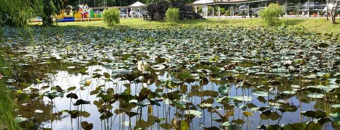 Pusat Urusniaga Hortikultur is one of Orte, die S gefallen.