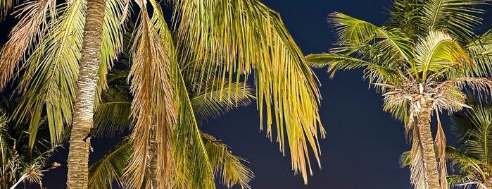 Cocos is one of Lugares guardados de Soly.