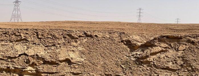 Alamaryah is one of Orte, die Yazeed gefallen.
