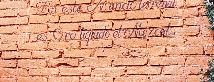Palenque de Mezcal El Rey de Matatlán is one of Oaxaca 2019.