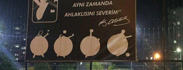 Türkan Saylan Spor Kompleksi is one of Murat'ın Beğendiği Mekanlar.
