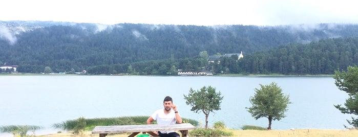 Abant Gölü Milli Parkı is one of Tempat yang Disukai Gözde.