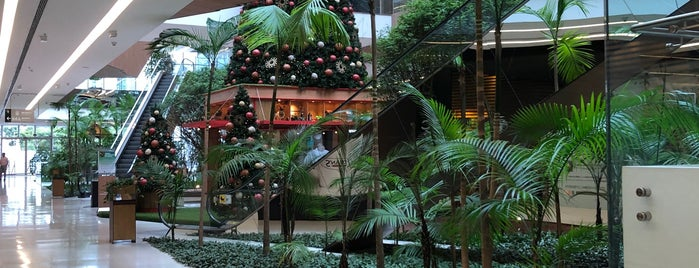 Shopping Parque da Cidade is one of Shopping.