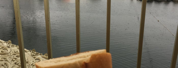 sapanca balık ekmek teknesi is one of สถานที่ที่ Burak ถูกใจ.