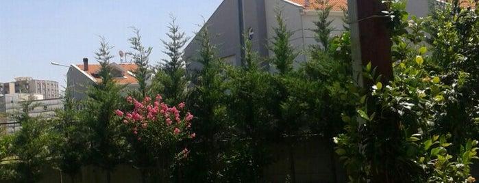Birey Modern Villaları is one of Lieux qui ont plu à Figen.