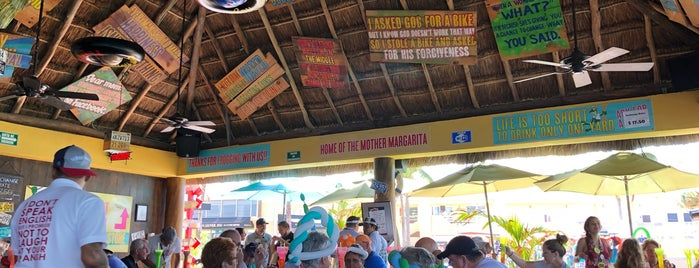 Half Señor Frog´s is one of Steveさんのお気に入りスポット.