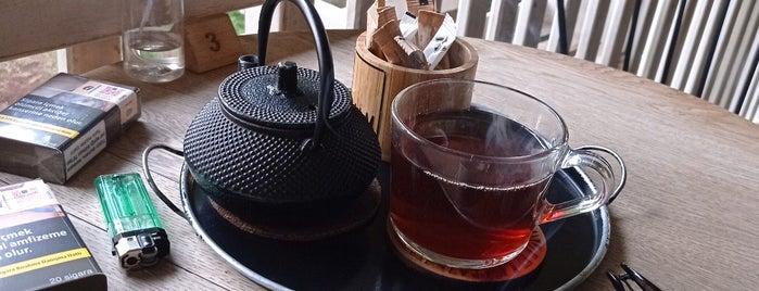 Palm Coffee Co. is one of Anıl'ın Beğendiği Mekanlar.