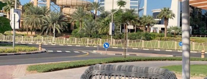 Arabian Tea House Restaurant & Cafe is one of Summer 2021 Goals 👙💕.