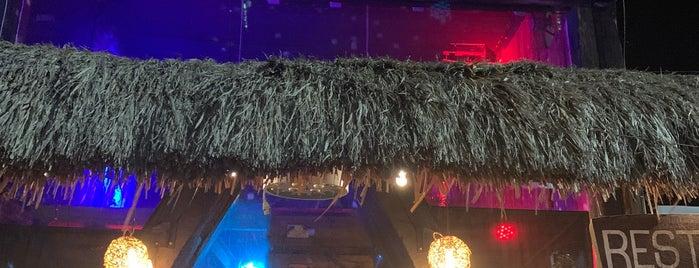 Santino Bar is one of Tulum.