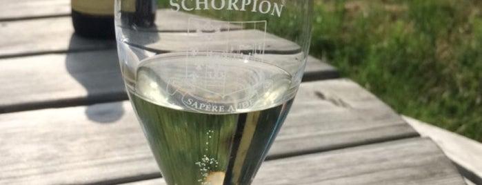 Wijngaard Schorpion is one of สถานที่ที่ Vincent ถูกใจ.