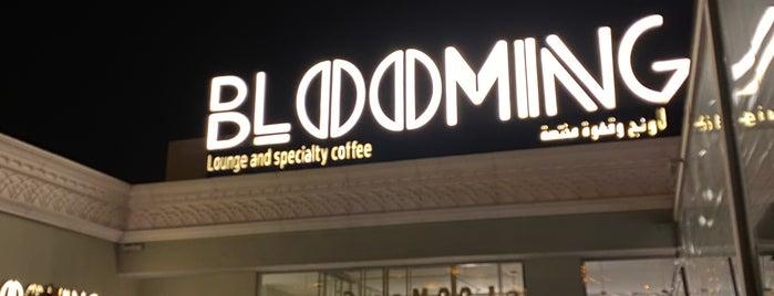 Blooming Lounge is one of Queen'in Kaydettiği Mekanlar.