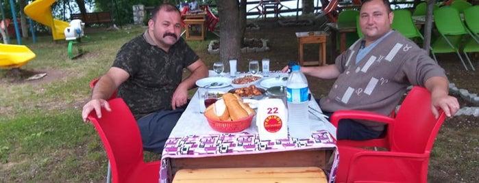 Yeniköy Pala'nın Yeri is one of Sadalmelek'in Kaydettiği Mekanlar.