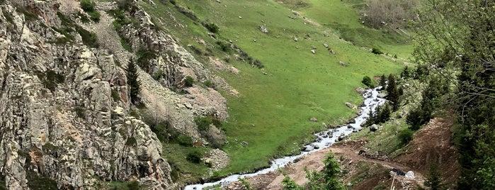 Demirkapı Yaylası is one of Mountain Resorts In Black Sea Region.