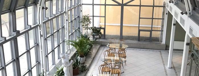 Кафе-бар «Оранжерея» is one of Alexandra Zankevich ✨ : понравившиеся места.