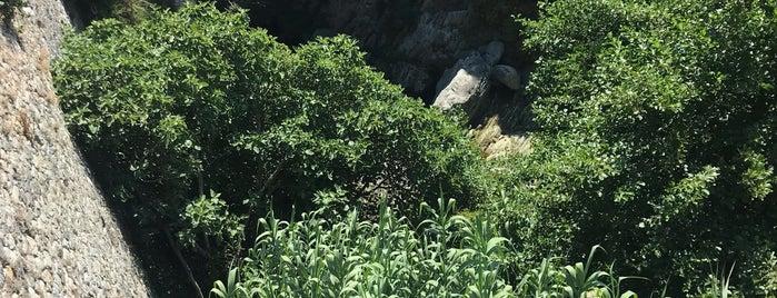 Sentier du Patrimoino is one of Corsica favs.