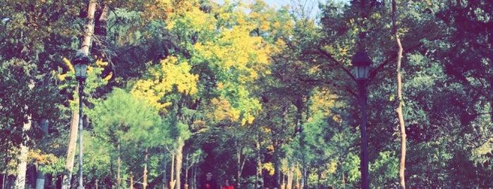 საქართველოს პირველი რესპუბლიკის პარკი / Georgia's First Republic Park is one of Galinaさんの保存済みスポット.