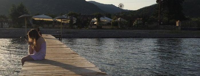 Özgür Kamp is one of Biga Yarımadası.