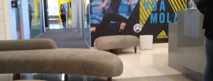 Adidas do Brasil is one of Tarzan : понравившиеся места.