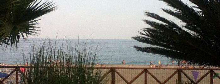 Recanati Beach is one of Lugares guardados de Sevgi.