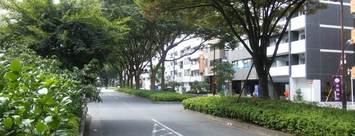 ABBEY ROAD is one of Tokyo.