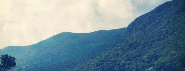 Taman Nasional Gunung Gede Pangrango is one of Parker.