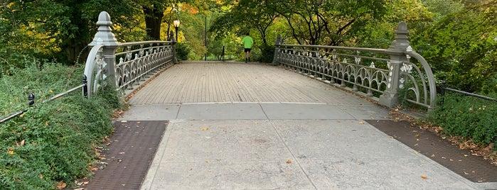 Bridge No. 24 - Central Park is one of NY'ın En İyileri 🗽.