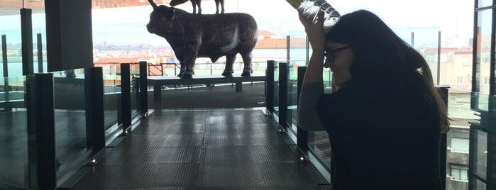 พิพิธภัณฑ์ศิลปะเรย์นา โซเฟีย is one of สถานที่ที่ Bianca ถูกใจ.