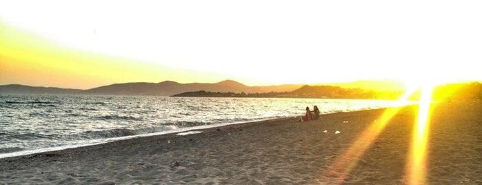 Arapyeri Long Beach is one of Tempat yang Disukai Γιεσιμ.
