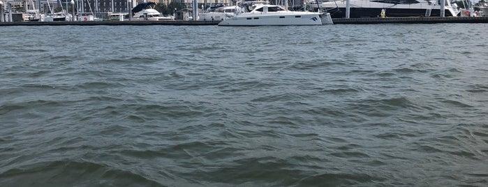 Adventure Harbor Tours is one of Charleston, SC.