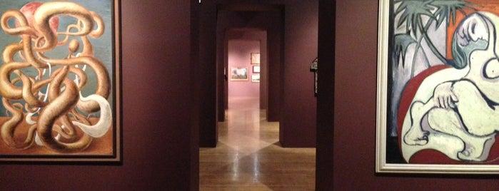 GASK - Galerie Středočeského kraje is one of Prague.