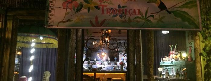 Cantina Tropical (El Jardín de Frida Hostel) is one of Posti che sono piaciuti a Leela.