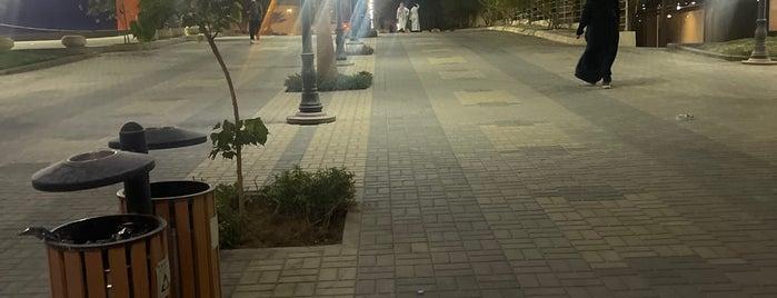 Al Malqa District Walk is one of Riyadh Walk.