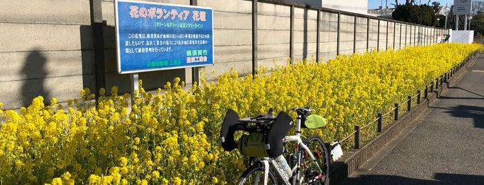 Nissan Oppama Plant is one of Orte, die Joao gefallen.