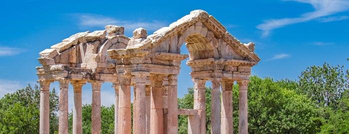 Afrodisias is one of Antik kentler ve  müzeleri.