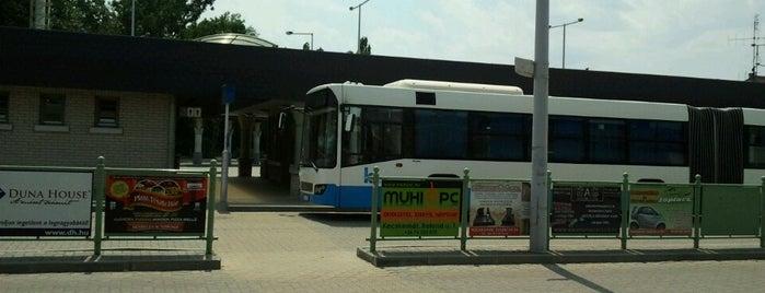 Kecskemét autóbusz-állomás is one of Tempat yang Disukai BJózsi.