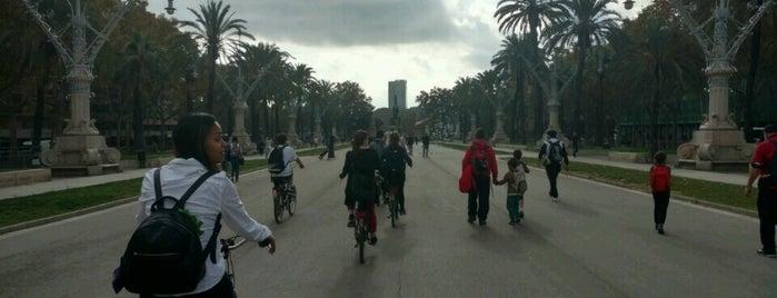 Sandemans New Barcelona is one of Barcelona - activities.