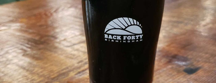 Back Forty Beer Company is one of Birmingham Best-Breweries Trail.