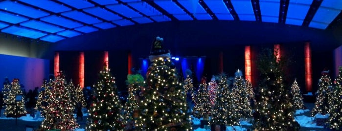 Festival of Trees and Lights is one of See Des Moines Ultimate List.