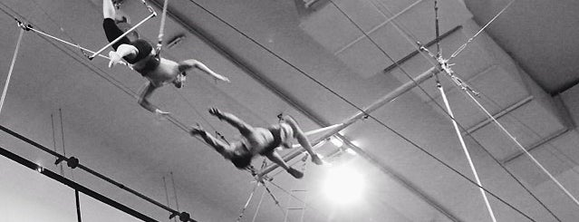 Trapeze School of New York in Chicago is one of The Best Ways to Feel Like a Kid Again in Chicago.