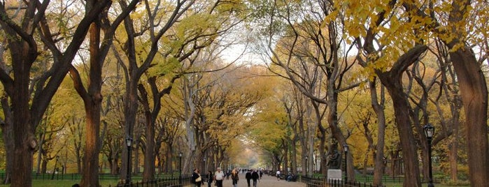 Central Park is one of Fav Cities!.