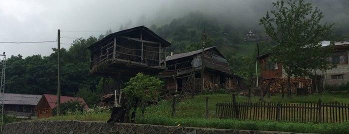 Tema Vakfi A. Nihat Gokyigit Konuk Evi is one of Gespeicherte Orte von Koroglu.
