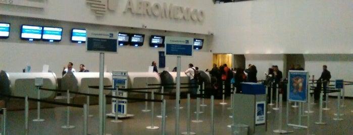 Terminal 2 is one of Orte, die Rogelio gefallen.