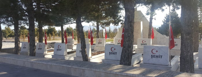 Afyonkarahisar  Giresun Şehitliği is one of Lieux qui ont plu à Yalçın.