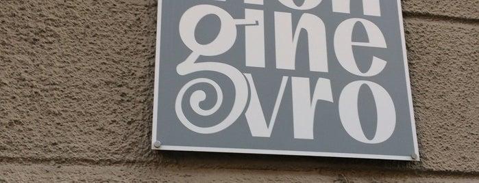 Gelateria Monginevro is one of g'ın Beğendiği Mekanlar.