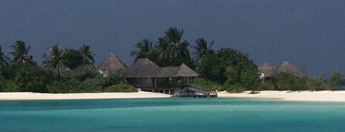 Sunset Lounge is one of Orte, die Alexi gefallen.