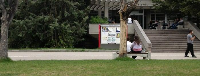 """Hacettepe Üniversitesi Beytepe Kütüphanesi is one of Kampüs Havasını """"Hisset""""."""