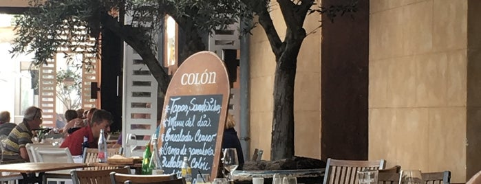 Colón is one of Palma mallorca.