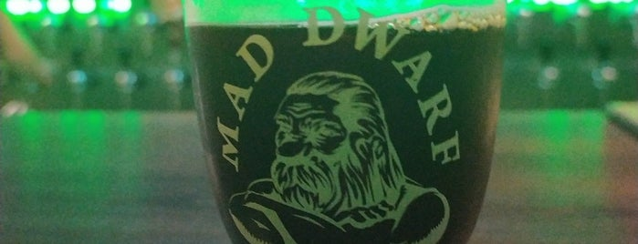 Mad Dwarf - Brew Pub - Joinville is one of Onde beber cervejas especiais em Joinville.