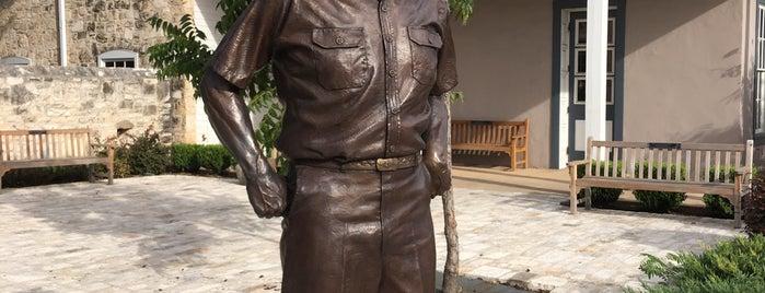Admiral Nimitz Museum is one of Rita : понравившиеся места.